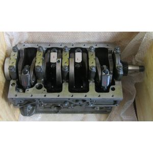 Short Block silnika Iveco 8041SI.25